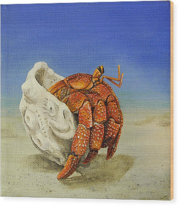 Hermit Crab Wood Print by Cindy D Chinn