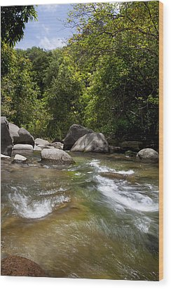 Iao River Wood Print by Jenna Szerlag