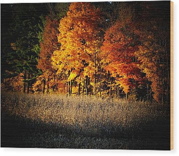 Indiana Autumn Wood Print by Michael L Kimble