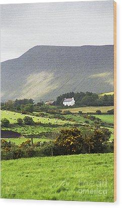 Irish Farm - Dingle Peninsula  Wood Print by Gordon Wood