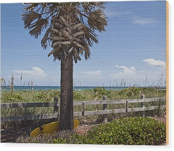 Juan Ponce De Leon Landing Site In Florida Wood Print by Allan  Hughes