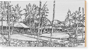 Kukio Estate Wood Print by Andrew Drozdowicz