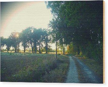 Landscape Near Mauvezin Wood Print by Sandrine Pelissier