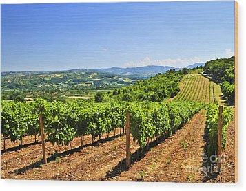 Landscape With Vineyard Wood Print by Elena Elisseeva
