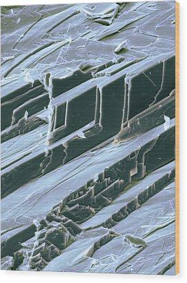 Lead, Sem Wood Print by Dr Kari Lounatmaa