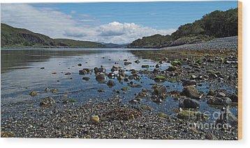Loch Spelve Wood Print by Steve Watson