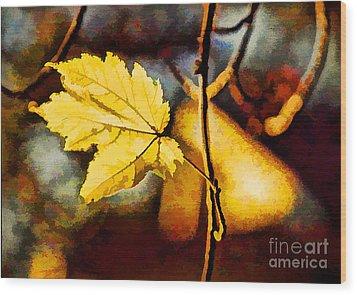 Lone Leaf Wood Print by Darren Fisher