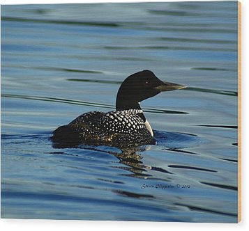 Wood Print featuring the photograph Loon 2 by Steven Clipperton