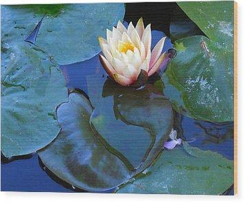 Lotus 2 Wood Print by Sarah Vandenbusch