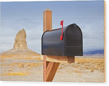 Mailbox In Desert Wood Print by David Buffington