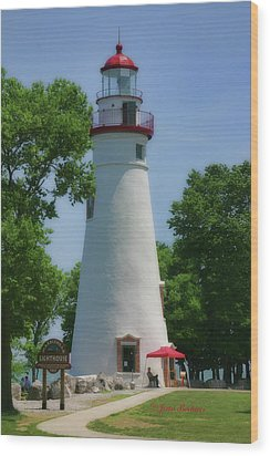 Wood Print featuring the photograph Marble Head Lighthouse by Joan Bertucci
