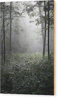 Misty Morning Wood Print by Rick Rauzi