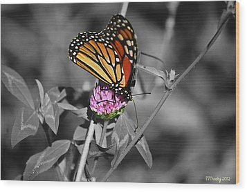 Monarch Butterfly On Clover Wood Print