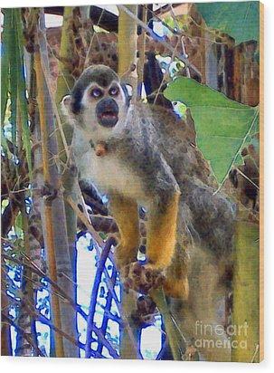 Monkeyshines Wood Print by Elinor Mavor
