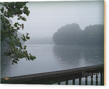 Morning Mist Wood Print by Gladys Steele
