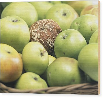 Mouldy Apple Wood Print by Sheila Terry