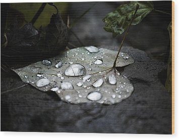 Wood Print featuring the photograph My Heart Weeps by Peggy Franz