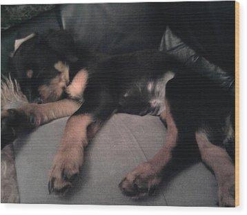 My Sleepy Pup Wood Print