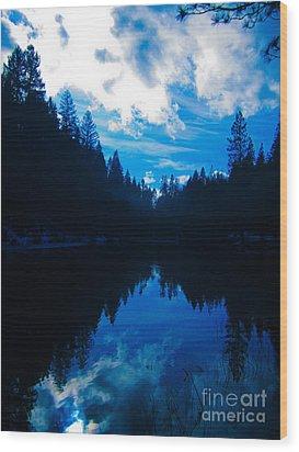 Nature's Blueprint Wood Print by Dan Julien