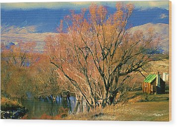 New Zealand Series - Creekside Autumn - South Island Wood Print by Jim Pavelle