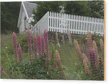 Norway, Hidra, Lupins And Lilies Wood Print by Keenpress