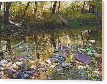 Wood Print featuring the photograph Oak Creek Reflection by Tam Ryan
