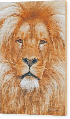 Old Lion Wood Print by Jerry L Barrett