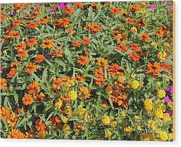 Orange And Yellow Wood Print by Theresa Willingham
