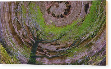 Orb Wood Print by Jean Noren