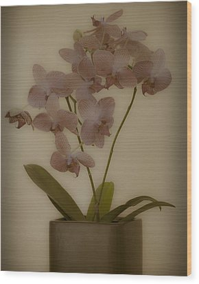 Wood Print featuring the photograph Orchid by James Bethanis