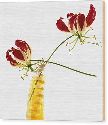 Orchids Wood Print by Bernard Jaubert