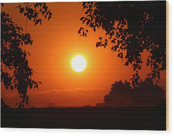 Wood Print featuring the photograph Oregon Sunset by Jo Sheehan