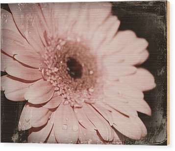 Pale Pink Wood Print by Cathie Tyler