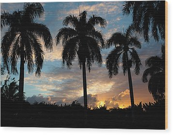 Wood Print featuring the photograph Palm Tree Silhouette by Karen Lee Ensley