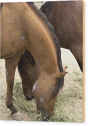 Wood Print featuring the photograph Parallel Ponies by Lorraine Devon Wilke