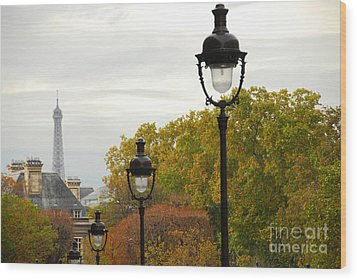 Paris Street Wood Print by Elena Elisseeva