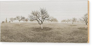 Peach Orchard Gettysburg Wood Print by Jan W Faul