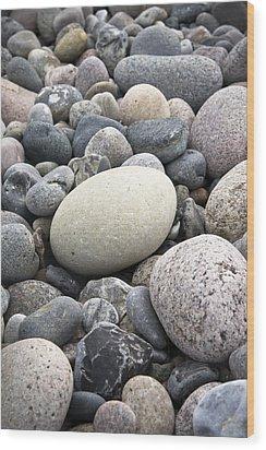 Pebbles Wood Print by Frank Tschakert