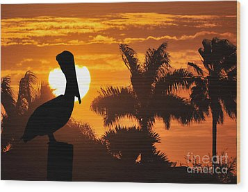 Wood Print featuring the photograph Pelican At Sunset by Dan Friend