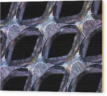 Perforated Steel Sheet, Light Micrograph Wood Print by Pasieka