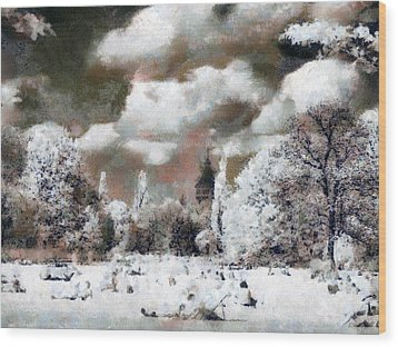 Picnic In Park Wood Print by Odon Czintos