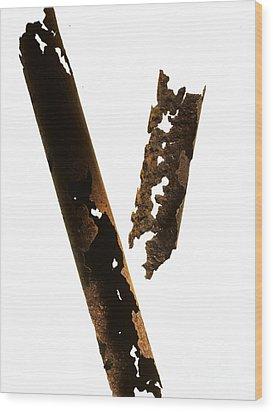 Pipe Wood Print by Tony Cordoza