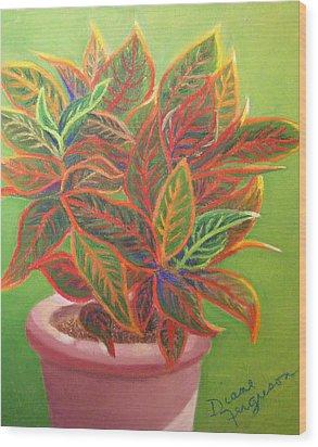 Plant Portrait I Wood Print by Diane Ferguson