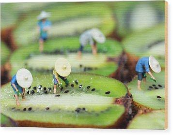 Planting Rice On Kiwifruit Wood Print by Paul Ge