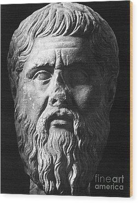 Plato (c427 B.c.-c347 B.c.) Wood Print by Granger