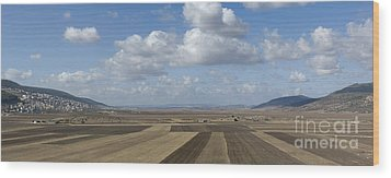 Plowed Agricultural Fields In The Beit Netofa Valley Wood Print by Noam Armonn