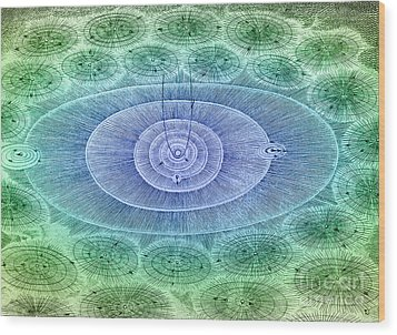 Plurality Of Worlds, Leonhard Euler Wood Print by Science Source