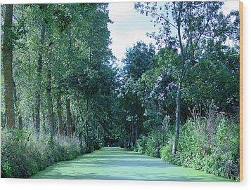 Poitevin Marsh Wood Print by Poitevin Marsh