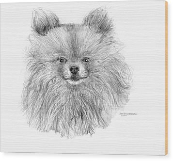 Wood Print featuring the drawing Pomeranian by Jim Hubbard