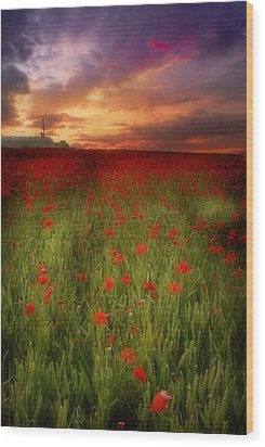Wood Print featuring the photograph Poppies At Dusk by John Chivers